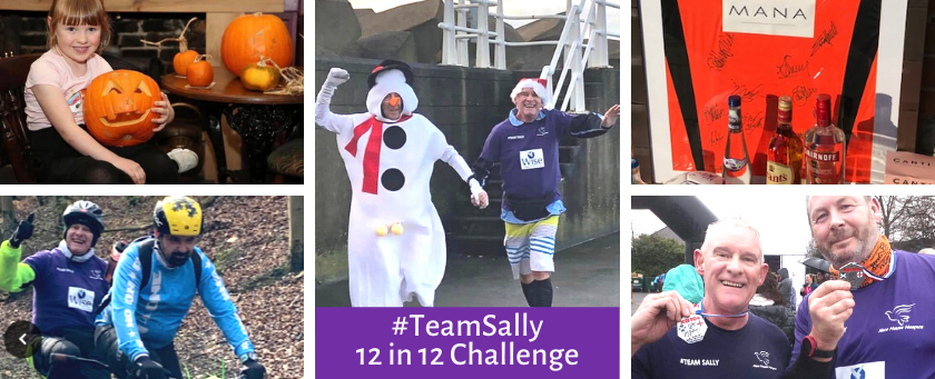 #TeamSally 12in12 Challenge